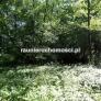 Poznan Piatkowo dzialka budowlana na sprzedaz 14880 mkw 007