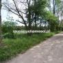 Zborowo dziaka budowlana na sprzedaz 3087 mkw 003